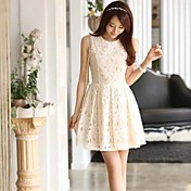 Vrouwen Lace Skater Dress