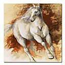 Printed Animal Horse Canvas Art with Stretched Frame