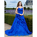 Ball Gown V-neck Court Train Organza Evening Dress