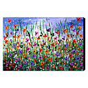 Hand Painted Oil Painting Floral 1211-FL0016
