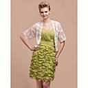 Beautiful Lace Half-Sleeve Casual/Party Jacket
