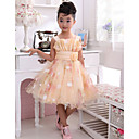Lovely Sleeveless Polyester/Tulle Wedding/Evening Flower Girl Dress