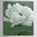 Hand Painted Oil Painting Floral 1305-FL0124