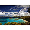 Printed Art Landscape Trunk Bay by J.D. McFarlan