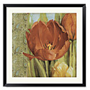 Framed Art Print Floral Tulip Paisley I by Lisa Audit